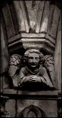 Evron (Mayenne)