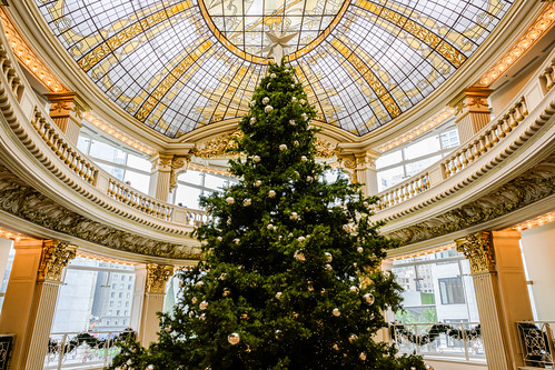Christmas in the Rotunda