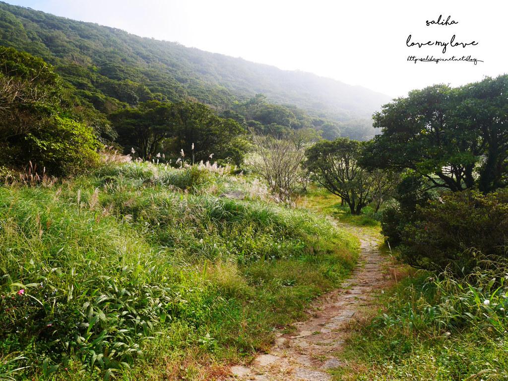 台北一日遊陽明山私房秘境推薦好玩好走親子景點大屯自然公園 (11)