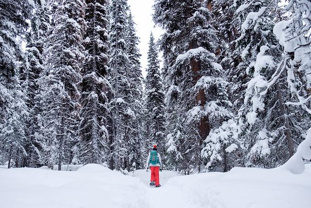 Snowshoeing - Rawson Lake - Jan 2019-1