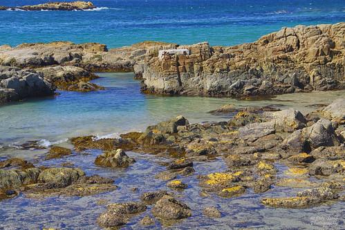 Diamond Head Rock Pools
