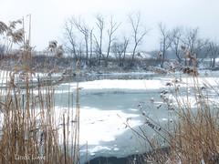 Frozen Chagrin River