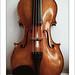 Instrument by Isabella Streicher