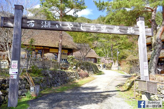 西湖療癒之鄉根場櫻花-16