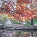 Clark Gardens by Ashley Jenssen