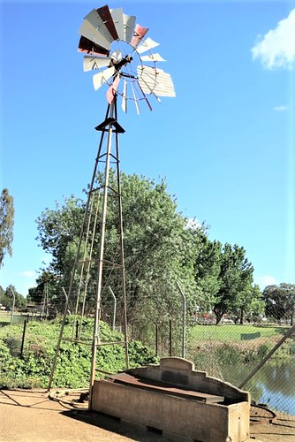 Windmill and Billiss water trough, Finley Historical Museum, NSW