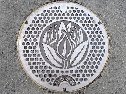 Hirokami Nigata, manhole cover (新潟県広神村のマンホール)