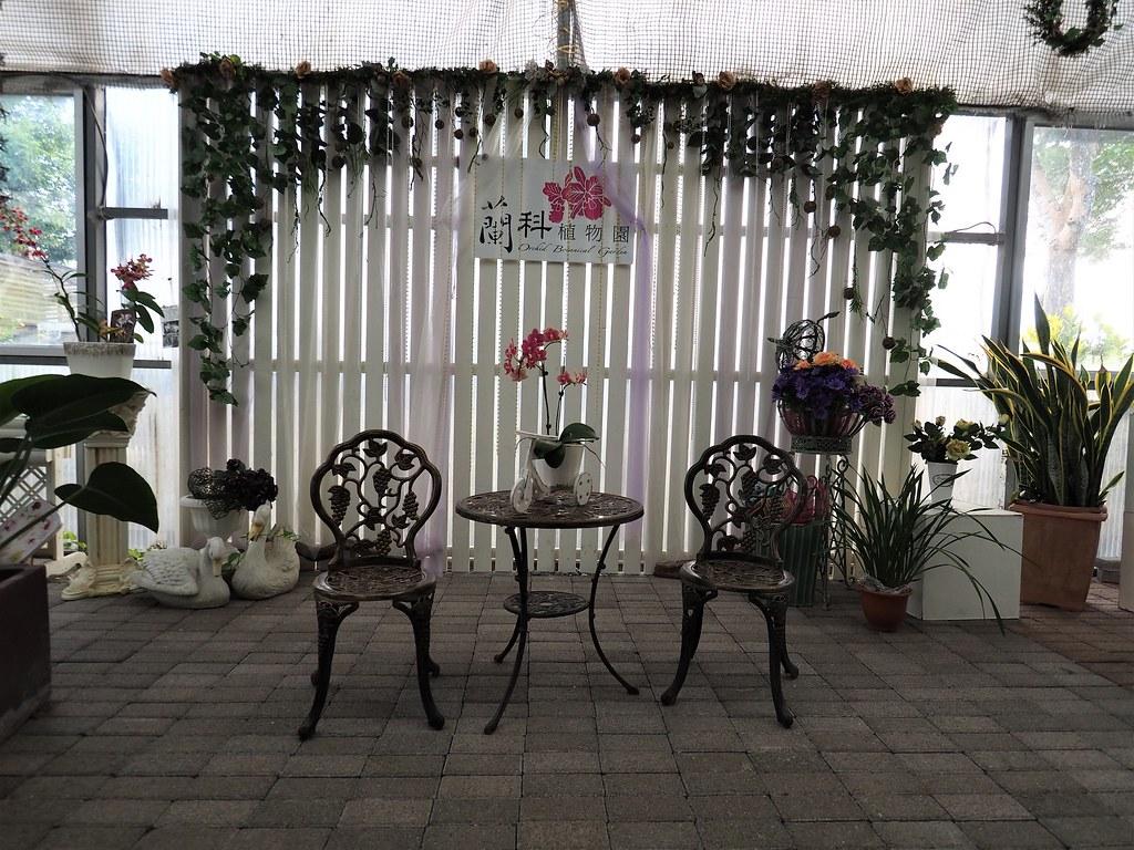 山上蘭科植物園 (7)