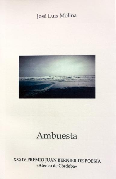 18l17 Libro José Luis Molina Ambuesta