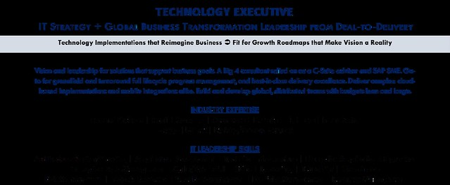 Technology Executive (2)