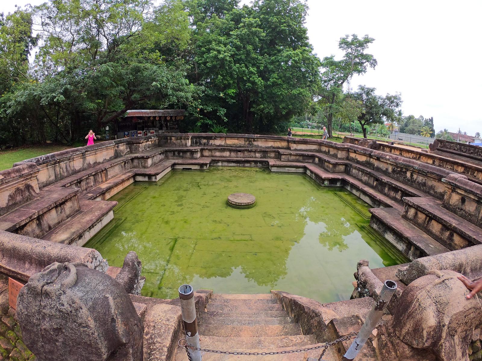 Visitar Polonnaruwa, la antigua capital de Sri Lanka visitar polonnaruwa - 39900920663 a6e4e0ac06 h - Visitar Polonnaruwa, la antigua capital de Sri Lanka