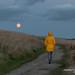 Newquay 2018 - A Yellow Raincoat