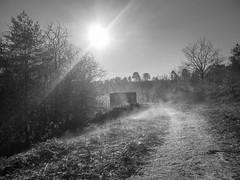 Frosty morning mist - Photo of Saint-Germain-sur-École