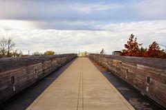 Looking Ahead on the Pedestrian Bridge