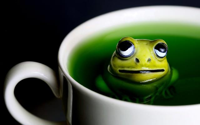 green tea dipper