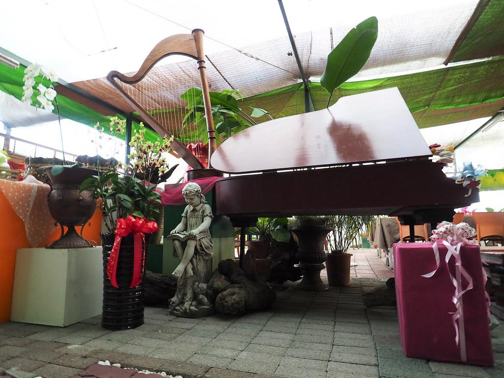 山上蘭科植物園 (9)