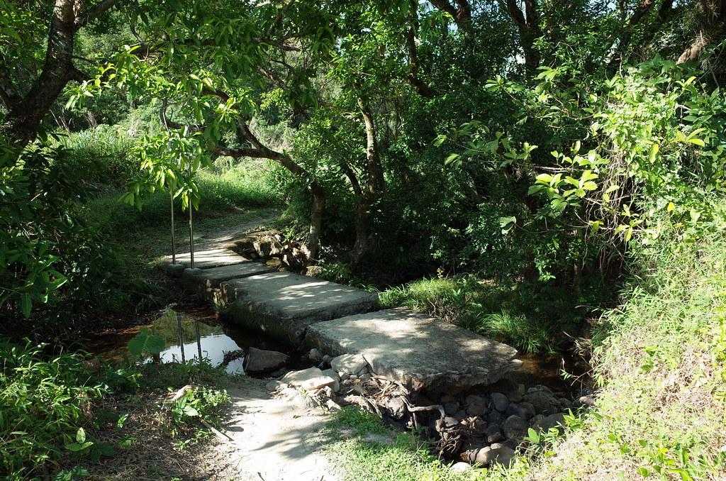 鳳園~沙螺洞~鶴藪水塘