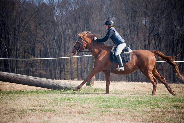 20181116 Austen's Ponies_57