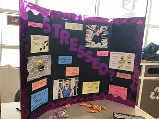 WHCL Health and Wellness Fair: Student Perspective