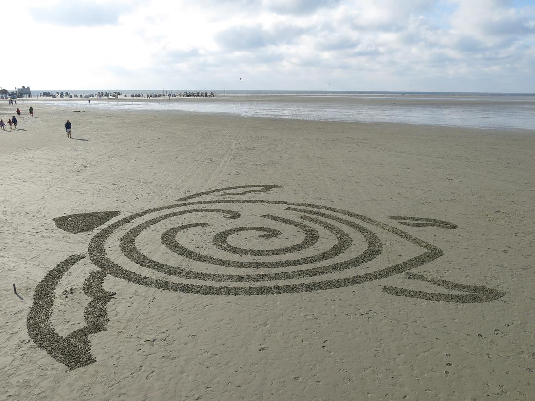 Умный робот-черепашка рисует на песке