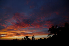 2018_12_14_sb-sunset_110