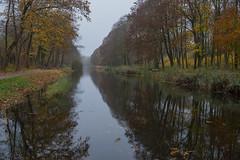 Palingbeek_DVL0467
