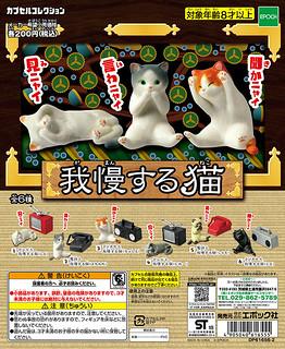 EPOCH 「忍耐貓咪」奇趣轉蛋作品!我慢する猫