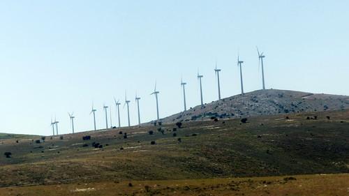Es gibt doch einige Windräder dort