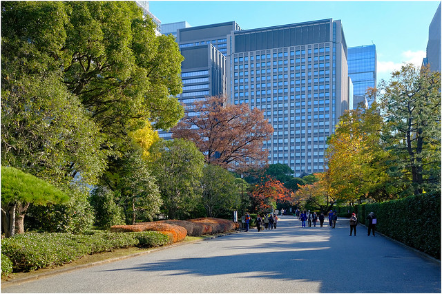 Photo:Contrast - Imperial Palace Gardens & Modern Tokyo, Japan By Geoff Whalan