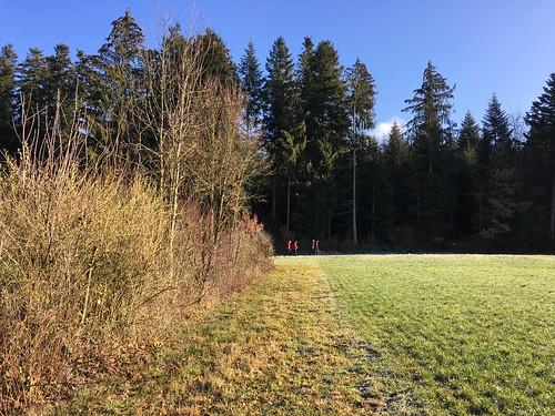 2018_12_12_7_Brücken_Aaretal_Kiesental (158)