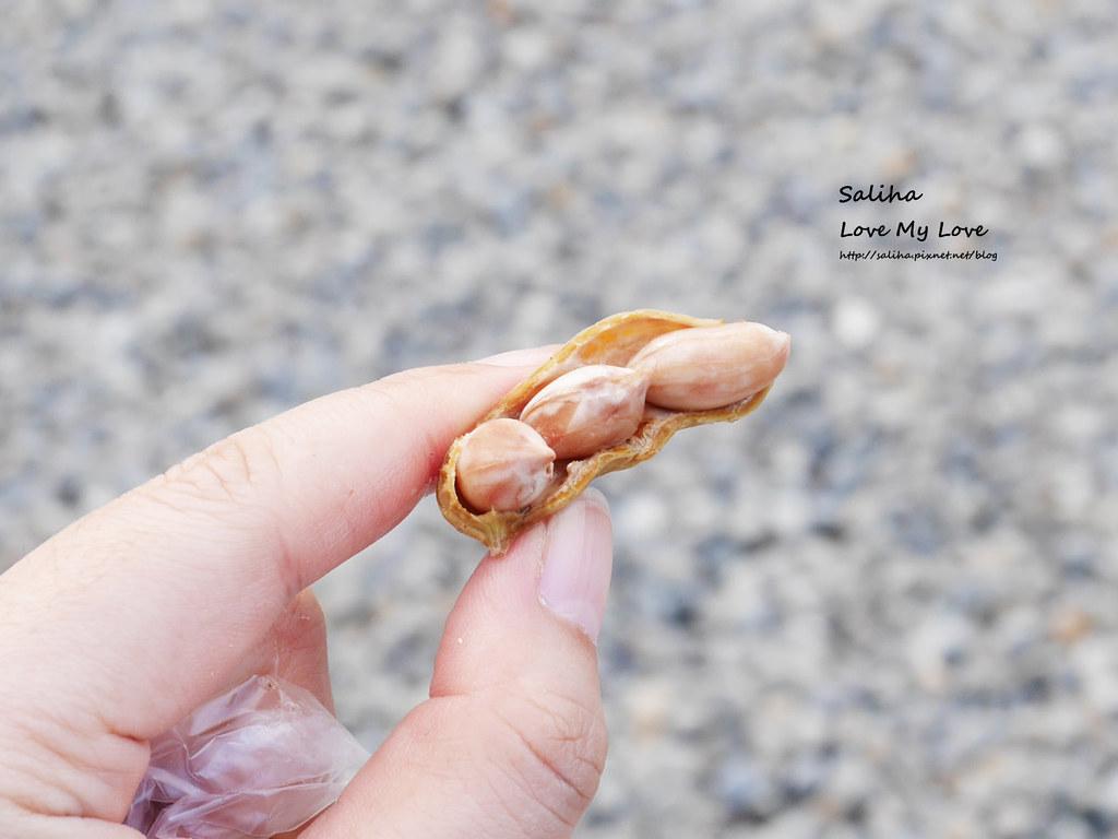 宜蘭一日遊親子好玩景點推薦清水地熱谷溫泉蛋 (17)