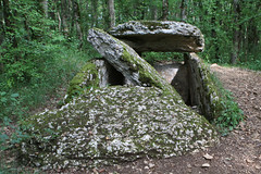 Dolmen du Devès des Gleyettes - Photo of Saint-Jean-de-Laur