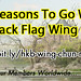 500 Reasons to go with Black Flag Wing Chun