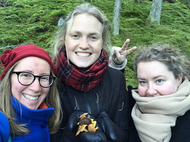 saturday, the chanterelle hunters, a day in fagertärn nature reserve with trojkan, fagertärn, tiveden