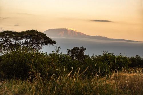 sunset kilimandjaro paysage park kenia amboselinationalpark nature coth5