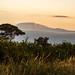 Kilimanjaro from the Kenian side