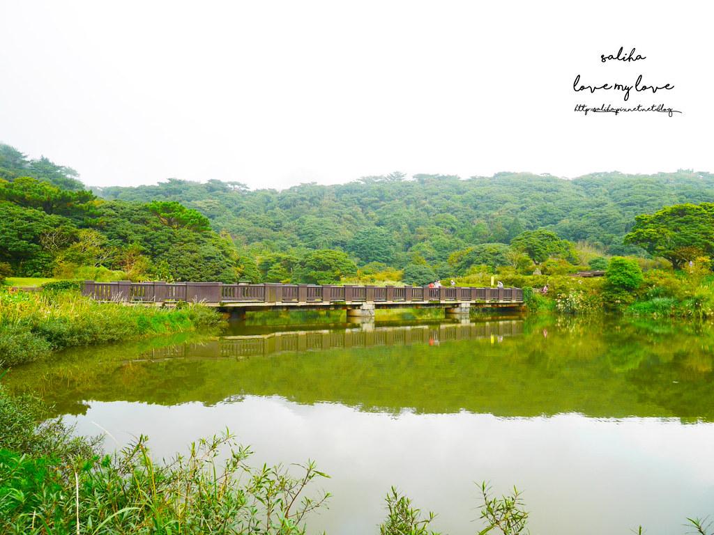 台北陽明山一日遊踏青景點推薦大屯自然公園 (7)