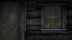 Red Dead Redemption 2_20181117030922