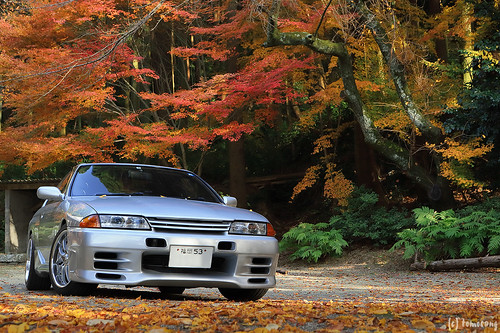 R32 SKYLINE in Autumn Color