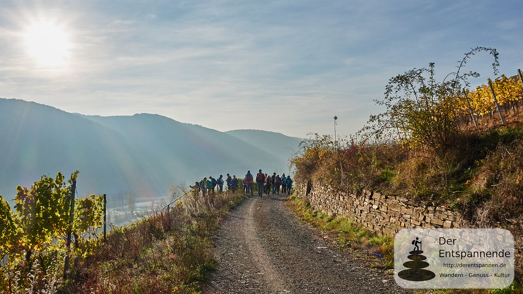 Bloggerwandern Pommern und Klotten an der Mosel