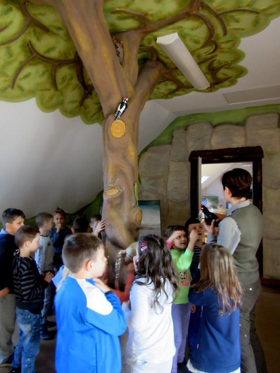 Terenowa lekcja przyrody w Szkółce Leśnej w Krzeszowie