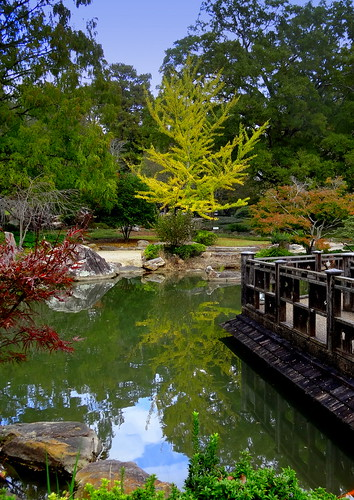 botanical garden landscape flora foliage travel water autumn november usa sony alabama birmingham reflection