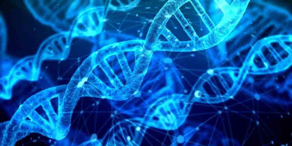 origines-protéines