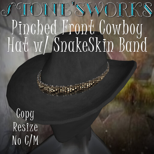 Pinched Front CB Hat SnakeSkin Band Stone's Works - TeleportHub.com Live!