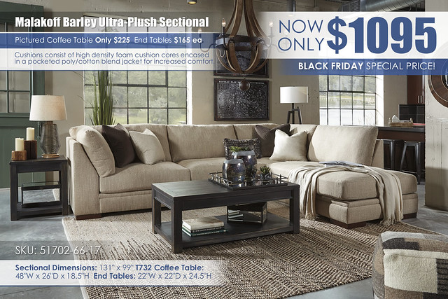 Malakoff Sectional Special_51702-66-17-T732
