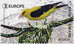 08 EUROPA NATIONAL BIRDS timbre A Loriot