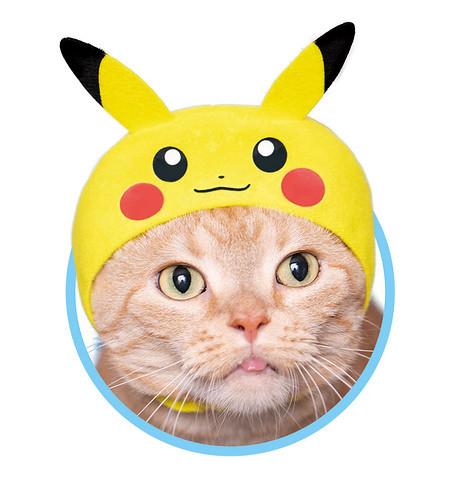 奇譚俱樂部超熱賣轉蛋『可愛貓咪頭套』第 29 彈發表 讓你家的喵星人變身精靈寶可夢!(かわいい かわいい ねこのかぶりもの ポケットモンスター)