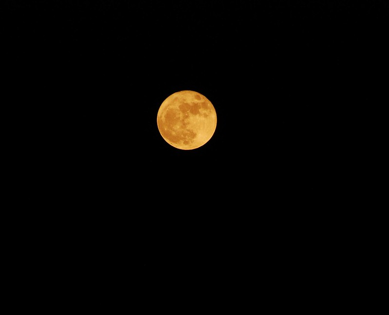 天狗吃月亮