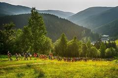 Mizuno Trail Running Cup otvírá registrace, nově zamíří i do Brd