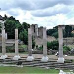ROMA - https://www.flickr.com/people/143059296@N04/